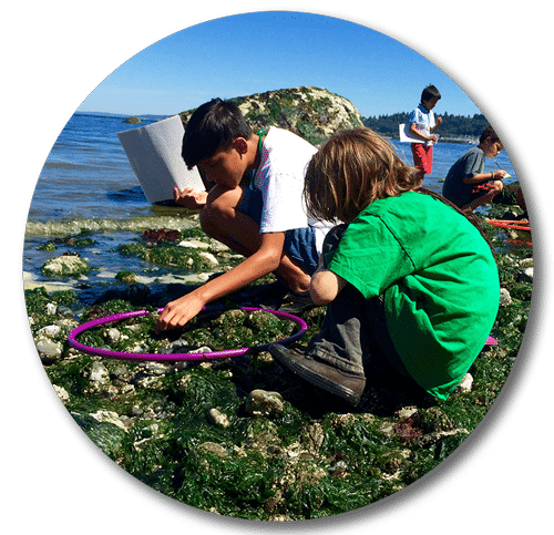 Two children exploring rocks by ocean