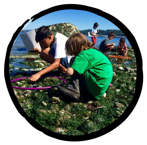 Kids exploring rocks by ocean